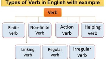 Types of verb in English
