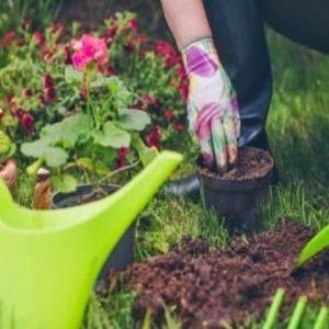 Horticulture Course Details
