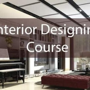 An Interior Designer In India