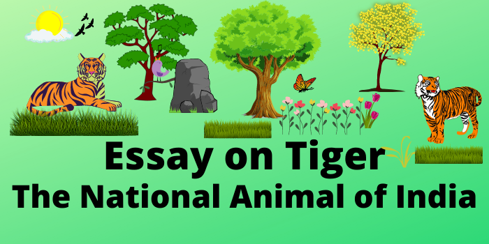 Essay on Tiger in English for all Class Students 2021